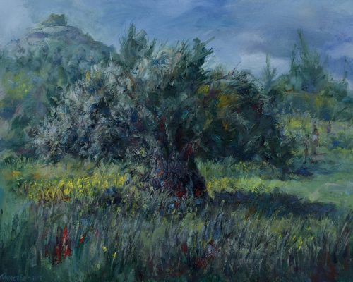 Olive-Tree-at-Mari painting Paskalis Anastasi Diachroniki Gallery